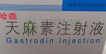 天麻素注射液
