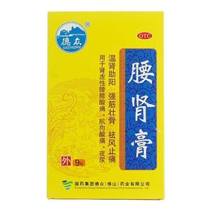 德眾 腰腎膏(國藥集團德眾(佛山)藥業有限公司)-德眾藥業包裝側面圖2